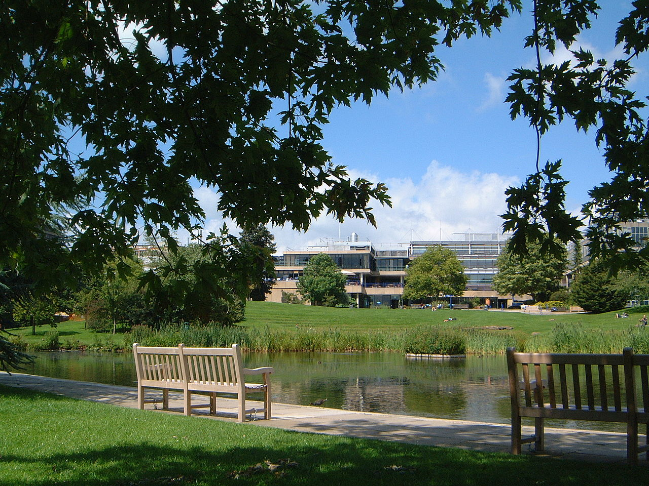 University of Bath - campus lake scene